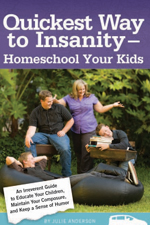 quickest-way-to-insanity-julie-anderson